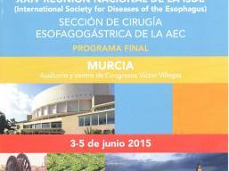 murcia_2015_cartel_imagen.jpg